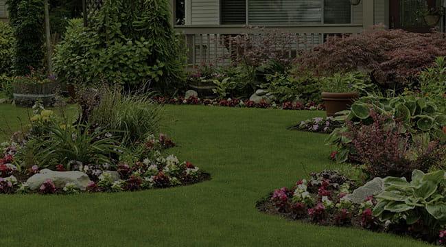 Princeville Landscape Design